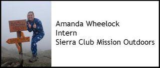Amandawheelockblog