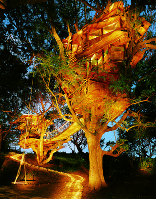 Treehouse hotels treehouses trees Sanya Nanshan Treehouse Resort China