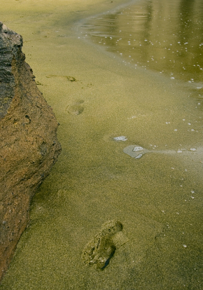 Papakolea Beach green sand Ka Lae Big Island Hawaii weird beaches
