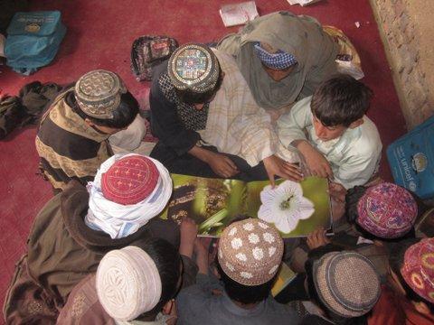 Shin Kalay students reading Shive book