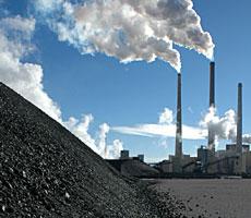 International coal