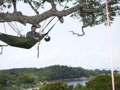Tim kovar treetop