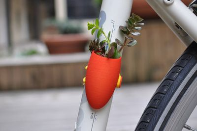 Wearable Bike Planter