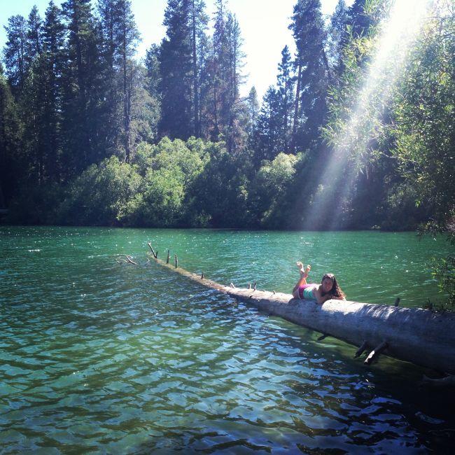 Log lake