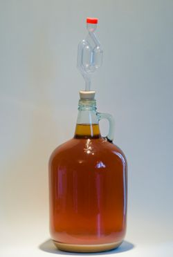 1 gallon of home brew with airlock