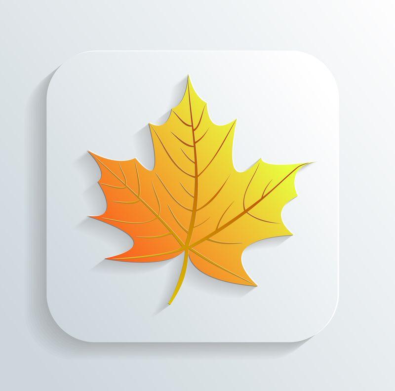Leaf App icon