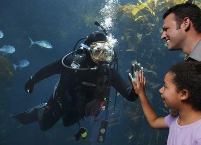 Monterey Bay Aquarium-Randy Wilder