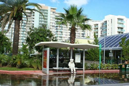 Miami polar bear bus stop