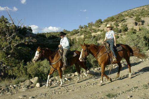 Tweeti & Linn on Bench above ranch hdqtrs