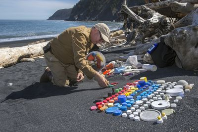 Artist Mark Dion sorts plastic found on the beach photo by Kip Evans
