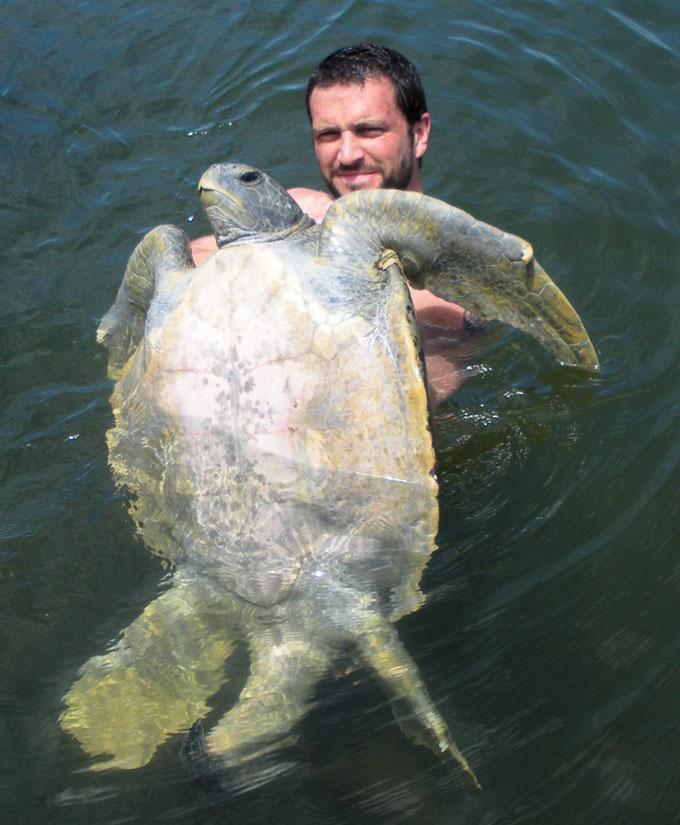 Bryan-Wallace-&-sea-turtle