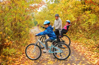 Family on bikes in forest