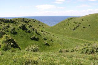 Rolling hills on Samso
