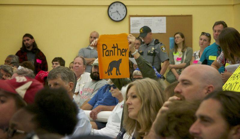 Fl panther