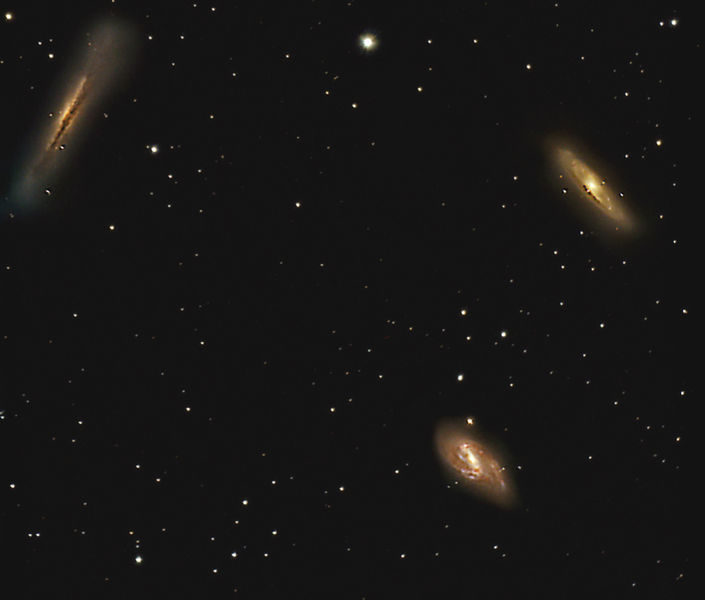 March 2014 Leo Triplet Scott Anttila Wikicommons