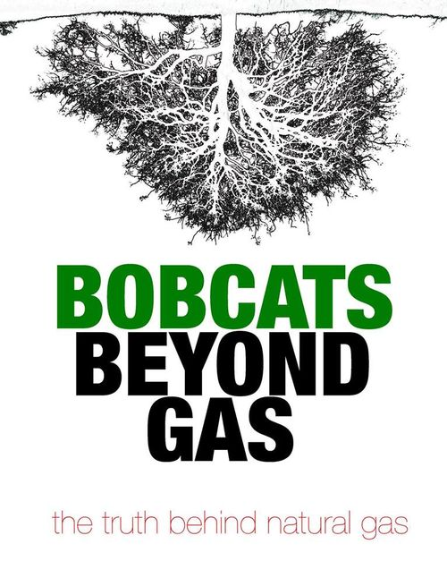Bobcats beyond gas logo