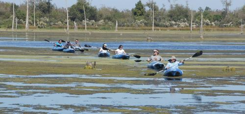 Bayou Bienvenue paddling trip