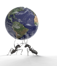 Ants_with_earth