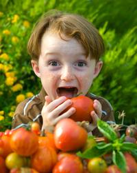 Tomato_lover_2