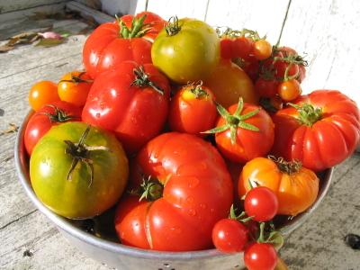 Tomatoesheirloom