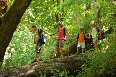 Kids_hiking_istock_000006933171xsma