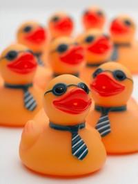 Rubber_ducks_istock_000006003382x_2