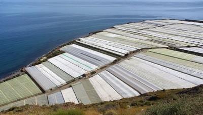 Greenhousesspain