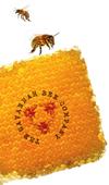 En_bees_3