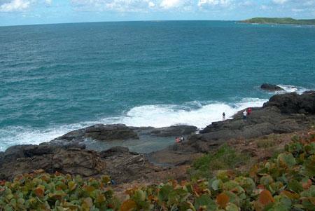 Corredor Ecológico del Noreste. Foto tomada de sierraclub.typepad.com