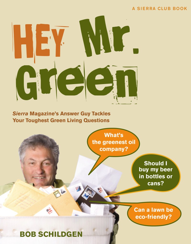 Hey_mr_green_book_cover_real